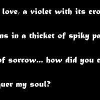 Neruda's Sonnet III: Bitter Love