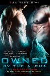 Owned-by-the-Alpha-Antho2-EvernightPublishing2017-MM-eBook-complete