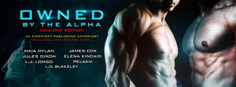 Owned-by-the-Alpha-Antho2-EvernightPublishing2017-MM-Banner1