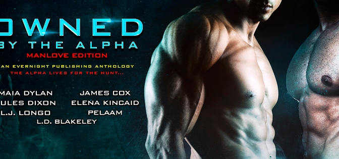 "Tell Us What You're Writing Now- Seven Days of Questions for the authors of ""Owned by the Alpha: Manlove Edition"""